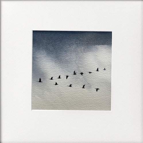 Monochrome - Flock of Geese, storm clouds