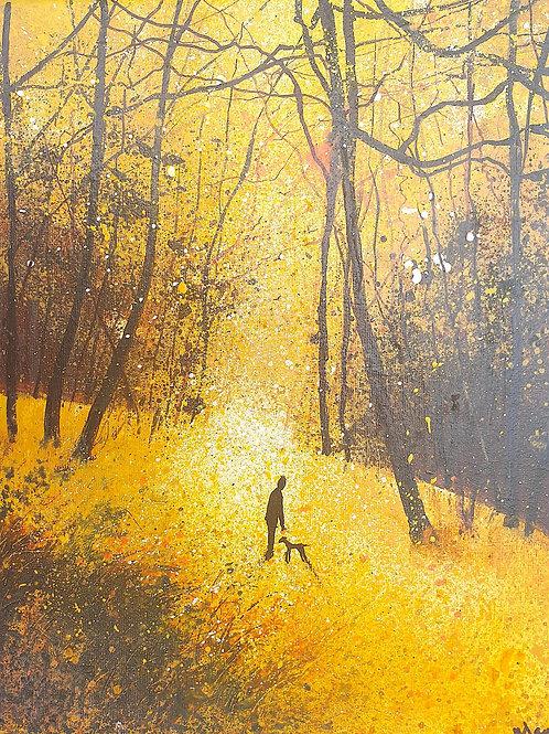Seasons - Golden Autumn Stroll with dog