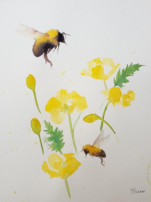 Bees & Welsh Poppies