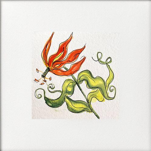 Bloomsbury Florals - Gloriosa Lily