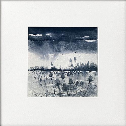 Monochrome - Teasel landscape