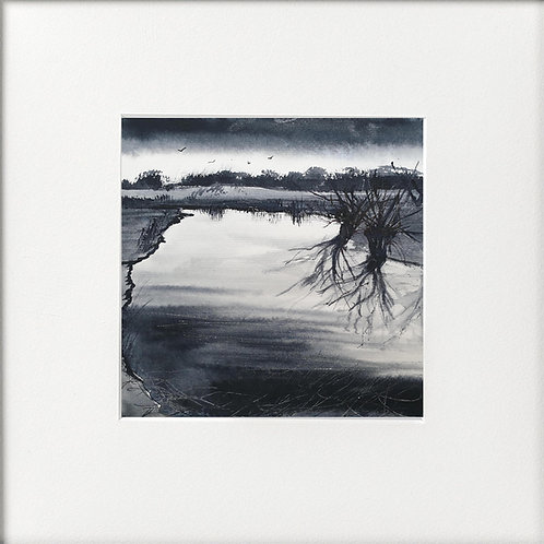 Winter Pollarded Willows Waters Edge