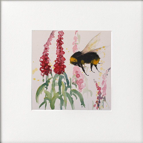 Bumble Bee & Foxgloves