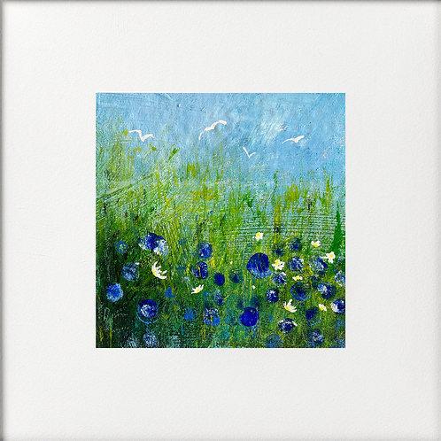 Seasons - Field of Blue Flowers