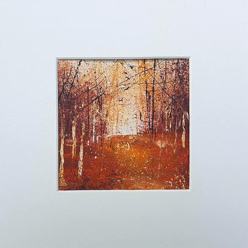 Seasons - Autumn 2