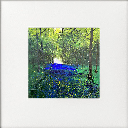 Seasons - One Spring Day in the Bluebells