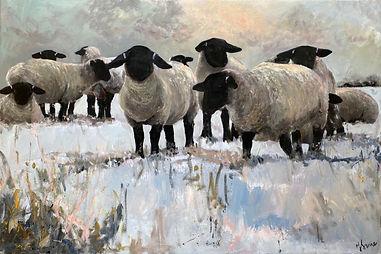 sheep best.jpg