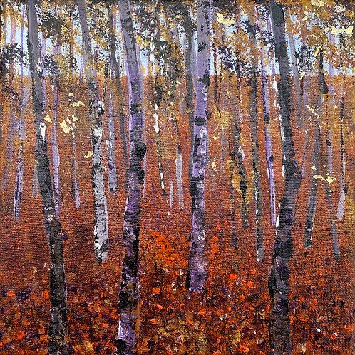 Birch Woods 1