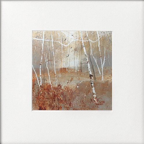 Seasons - Winter Warm tones silver birches