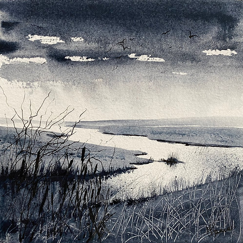 Monochrome - Uninterrupted Marshes View