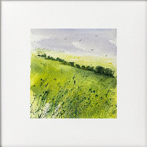 Seasons - Fresh Green Fields