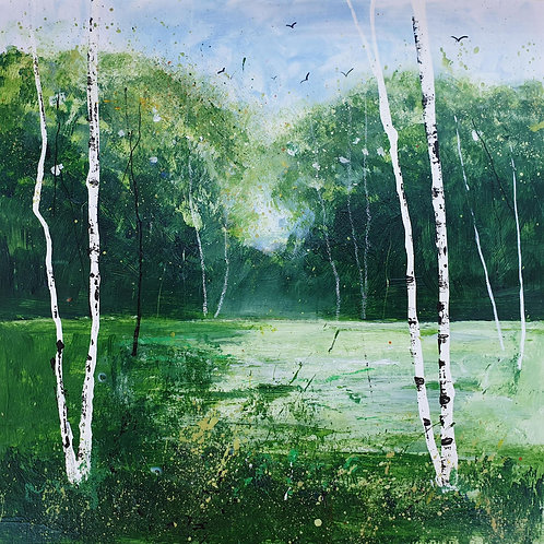 Summer Silver Birches