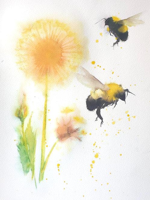 Bees & Dandelions