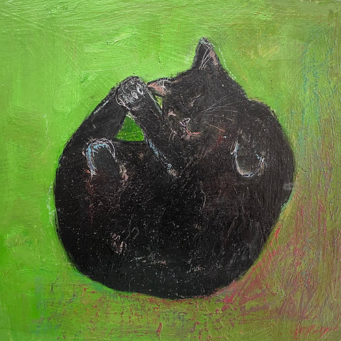 Sleeping Black Cat on Green