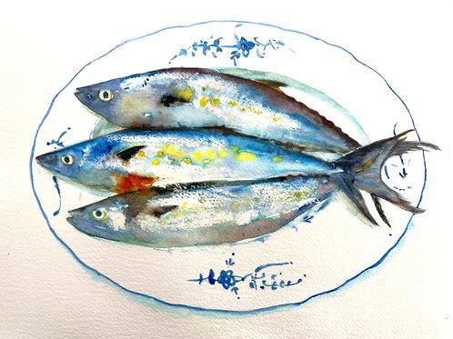 Three Fish on Blue & White Plate