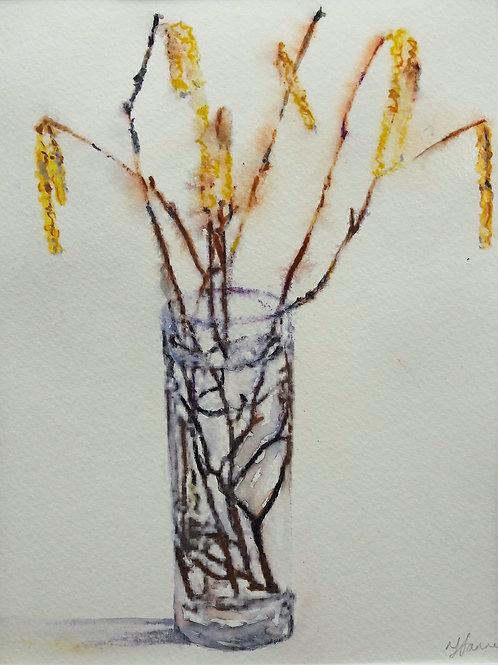 Spring Catkins in a Vase