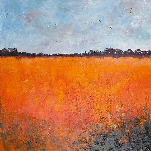 Haze over Orange Fields, Swallows