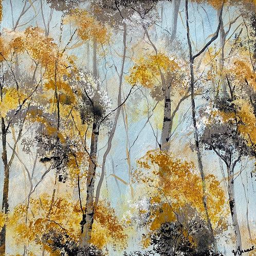Autumn Silver Birches
