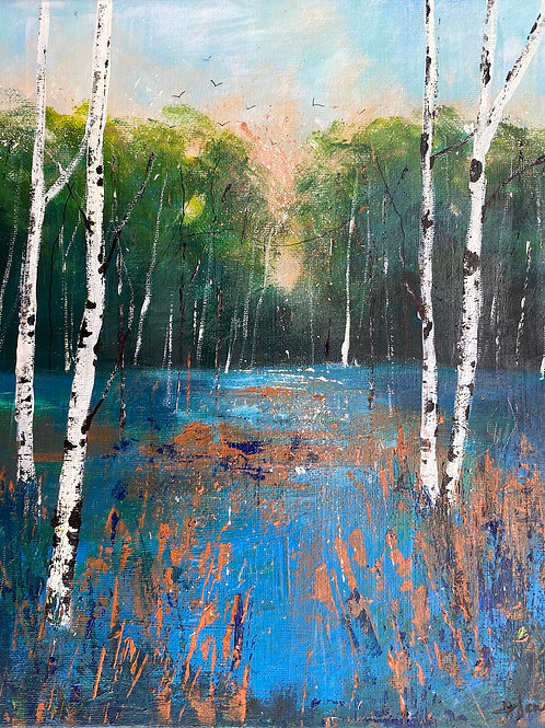 Seasons -Summer evening Silver Birches
