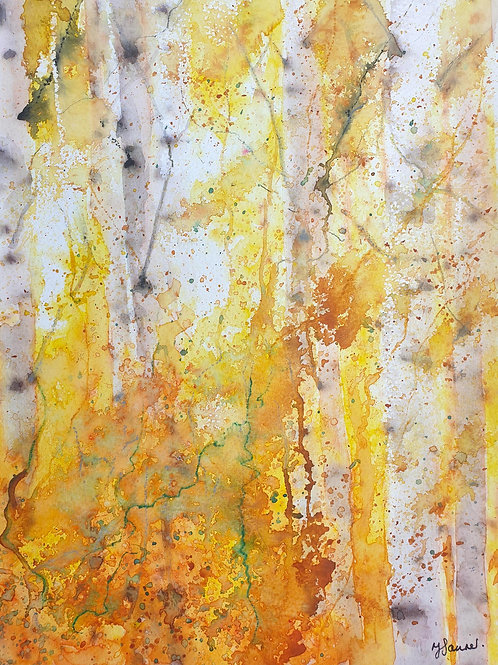 Impression of Autumn Birches