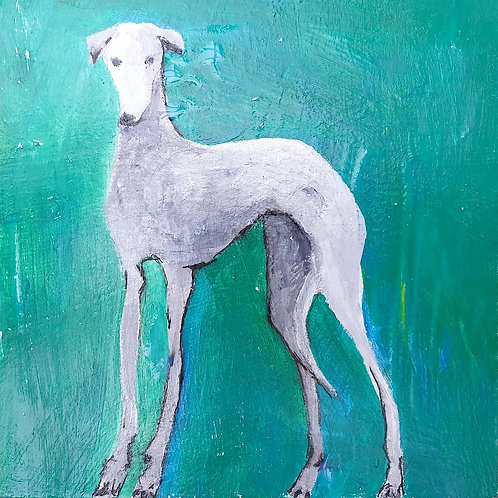 Greyhound of Blue Green