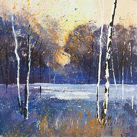 seasons winter low sun birches.jpg