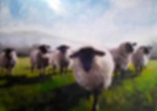 sheep under fells.jpg