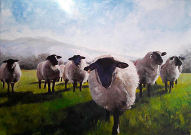sheep under fells.jpg