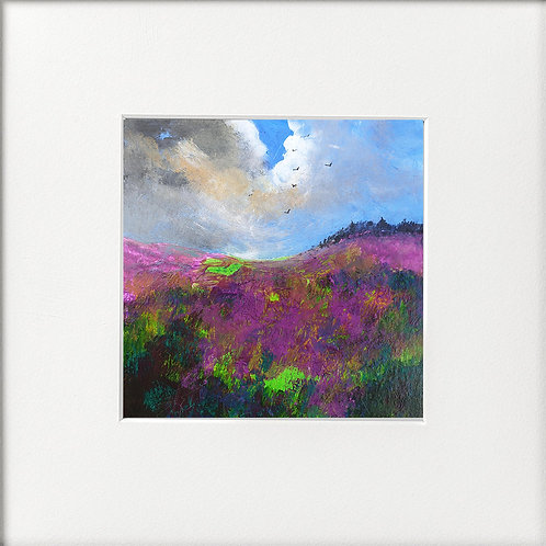 Seasons - Spring Heather on Hills