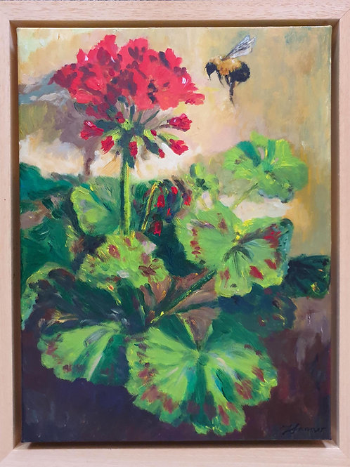 Red Geranium & Bumble Bee