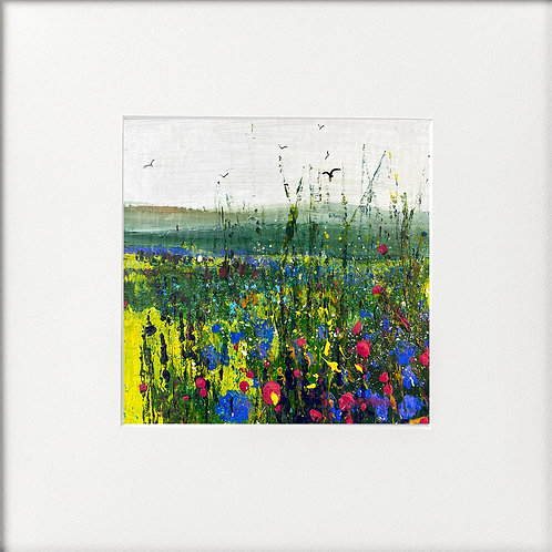 Seasons - Summer Wildflowers & Cornflowers Field