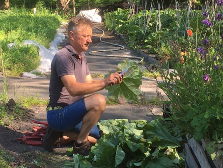 Die heerlijke zomerse dagen zorgen ervoor dat al de groenten nog lekkerder smaken..