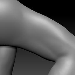 upper arm L.png