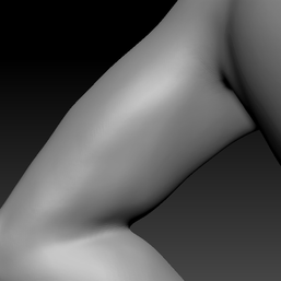 upper arm L2.png