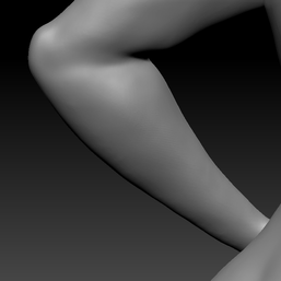 lower arm L2.png