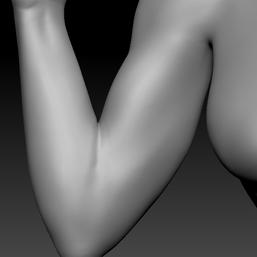 upper arm R.png