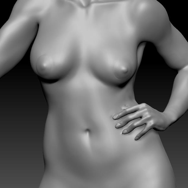 torso.png