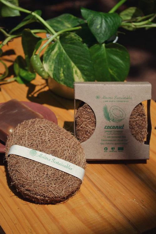 Coconut Fiber – Cleaning Kit (Pack of 5 Coir Brushes)