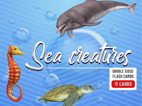 Sea Creatures - Baby Flash Cards - 16 Cards
