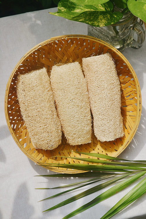 Loofah Sponge – Natural Bathing Scrub (Pack of 3)