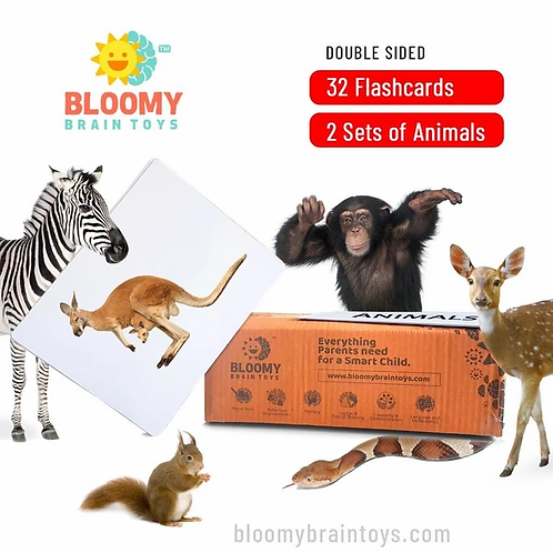 Different Animals - Baby Flash Cards - 32 Cards - 2 Sets