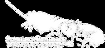 logo2white.png