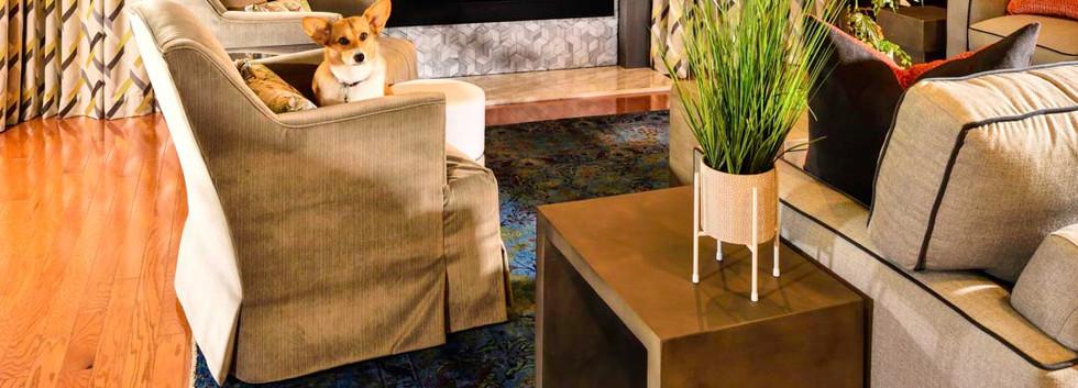 Transformed Living Room and adorable Corgi