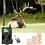 Thumbnail: GSM MMS GPRS hunting trail camera hc 300m Suntek with 940nm Night vision LEDs