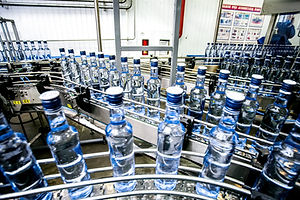 Many bottles on conveyor belt.jpg