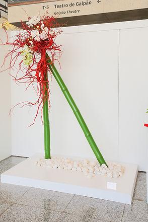 Bambú, orquidea_Renantera,_raiz_pintada.