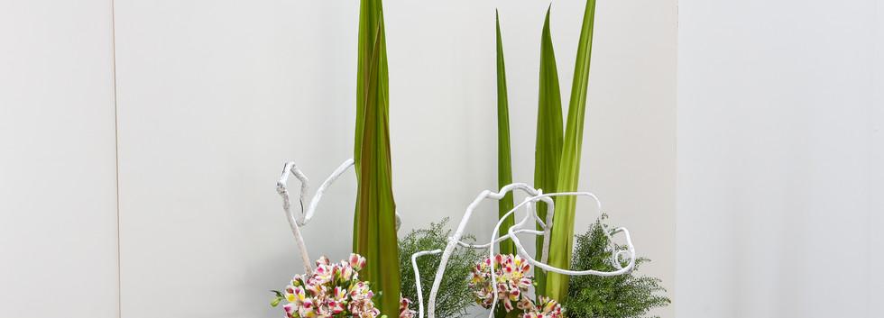 Composição com agave , astromélia e cipó pintado de branco