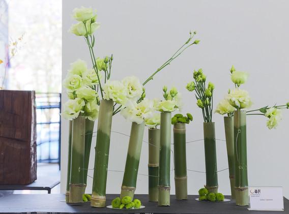 Bambú e lisianto