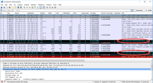 Wireshark Spurious Retransmissions - a Concern?
