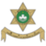CPSP logo.png